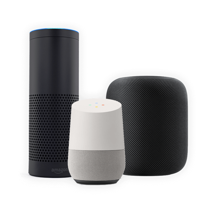 Market leading voice assistants
